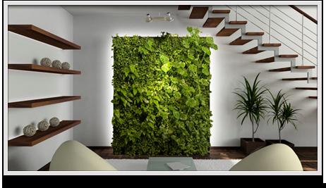 Muros verdes invaden la decoraci n decorati for Diseno de muros verdes